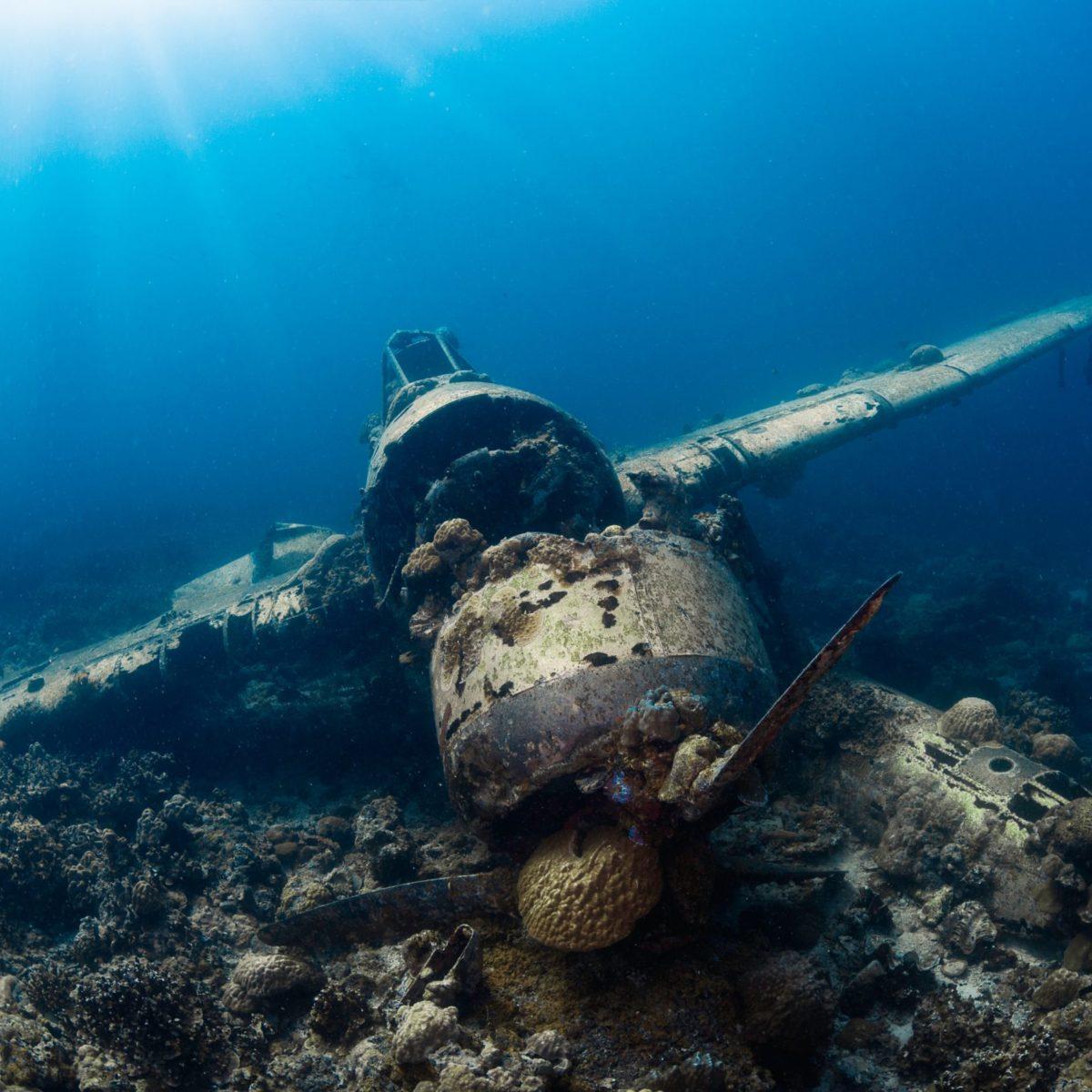 Micronesia - Beneath the Waves